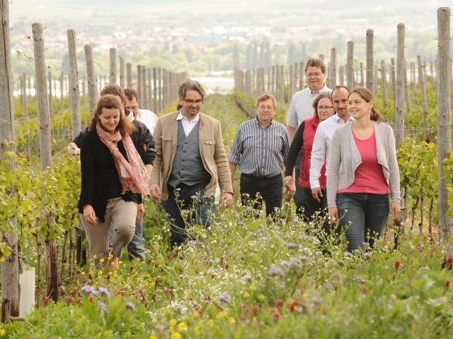 有機葡萄農園を歩く生産者たちの写真