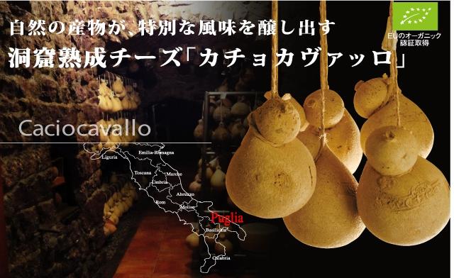 自然の産物が、特別な風味を醸し出す 洞窟熟成チーズ「カチョカヴァッロ」 EUのオーガニック認証取得 Caciocavallo