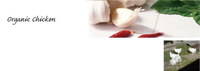 ニンニクと唐辛子、鶏の写真