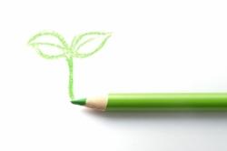 緑色の色鉛筆と新芽のイラスト写真