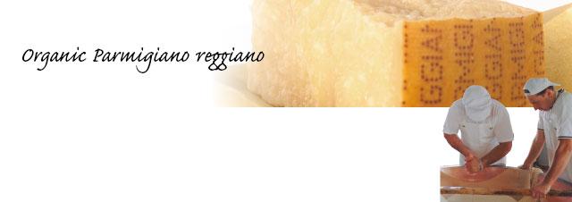 カットされたパルミジャーノ・レッジャーノの写真
