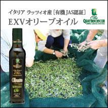 有機JAS認証エキストラバージンオリーブオイルオリヴァストロのボトルと3名の生産者がオリーブの実を手作業で選定している写真